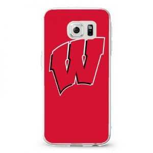 Wisconsin Badgers 22 Design Cases iPhone, iPod, Samsung Galaxy