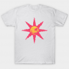 PRAISE THE SUMMER tee shirt